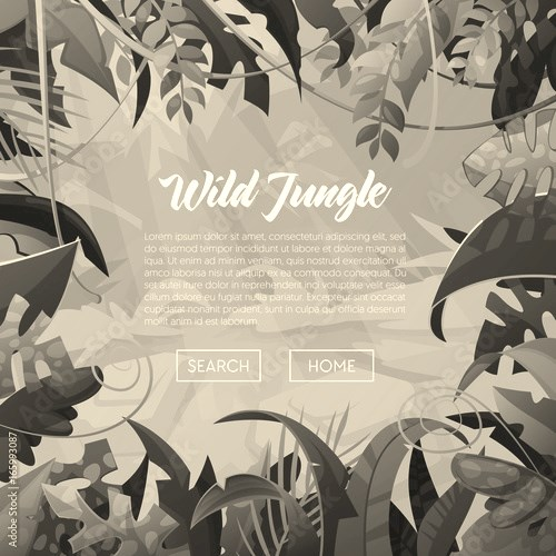 Jungle Banner Tropical Leaves Background. Palm Trees Poster. Vector illustration