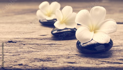 Pile of zen stones and Frangipani flower isolated on white background