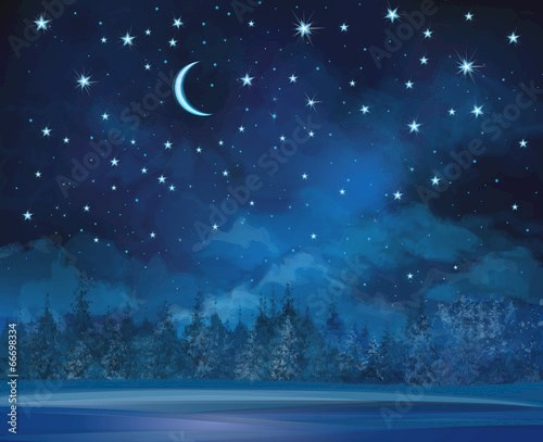 Vector night winter scene, sky and forest background.