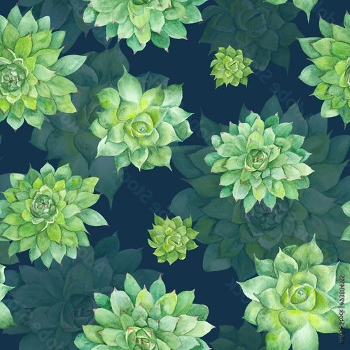 Watercolor Succulent Pattern on Blue Background