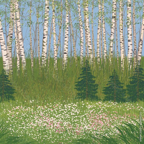 Vector illustration a flowering meadow in a forest