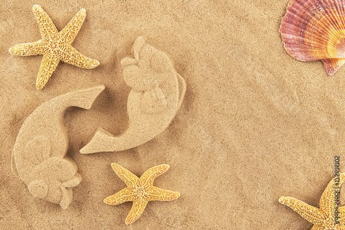 Molded sand fishes and starfish, isolated on white background.
